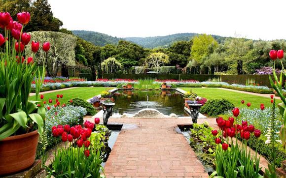 وصف حديقة جميلة