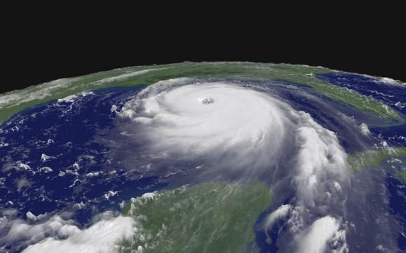 كتابة فقرة تبين فيها العلاقة بين الغطاء النباتي و المناخ